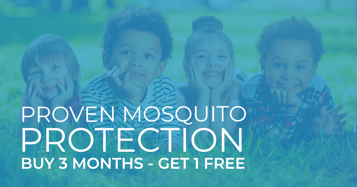 MosquitoPromoEmail