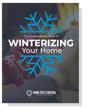 Winterizing Your Home Cover with shadow