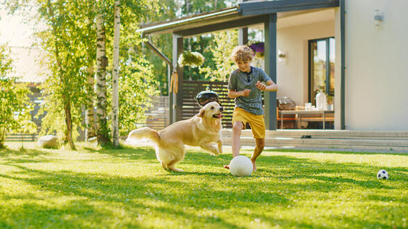Boy Playing Soccer With Dog in Yard